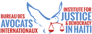IJDH-logo